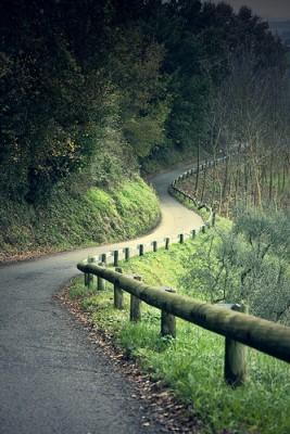 Tuscan Road by Blackburn Photo
